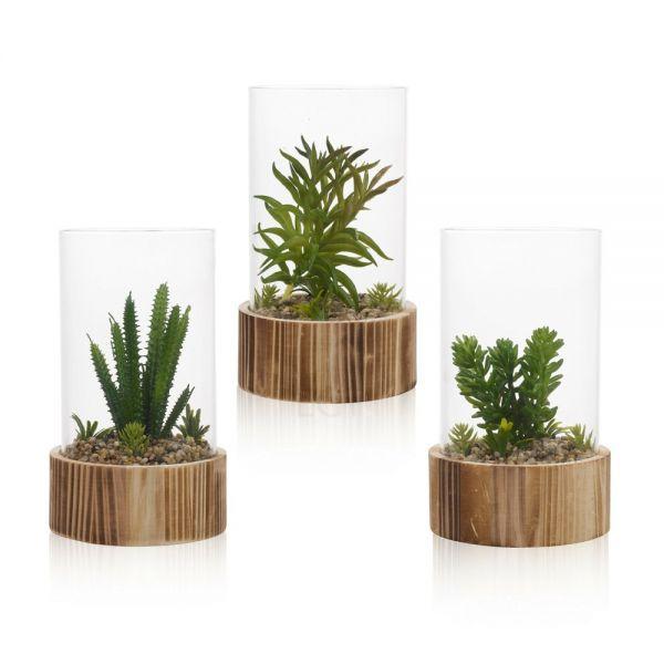 Decorative Artificial Cactus Plant Bell Jar - 3 Type