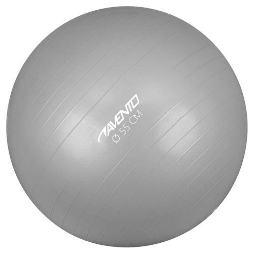 Avento Fitness/Gym Ball Dia. 55 cm Silver