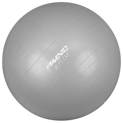 Avento Fitness/Gym Ball Dia. 75 cm Silver